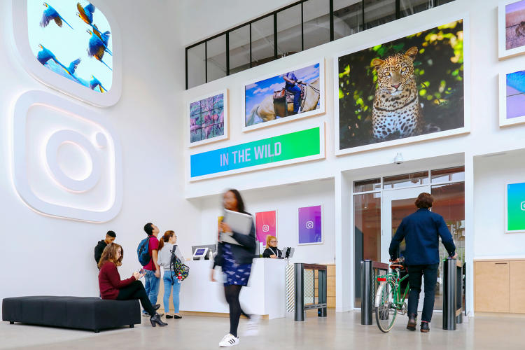 <p>In the lobby of Instagram's new offices, an interactive gallery displays enlarged images from the Instagram community that change throughout the day.</p>