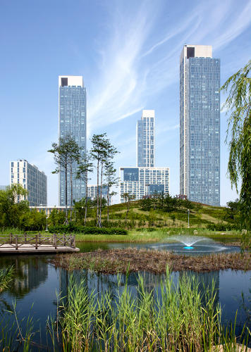 <p>Stormwater is captured on green roofs and also used to irrigate parks.</p>