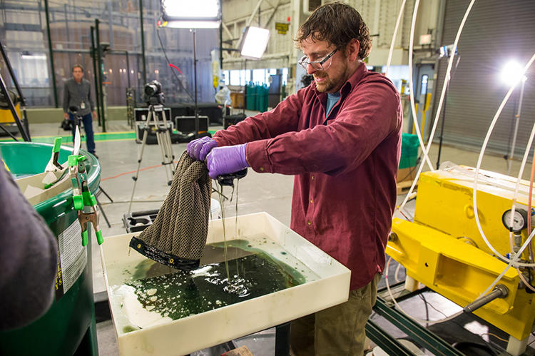 The Latest Solution For Cleaning Up Oil Spills? It's A Sponge