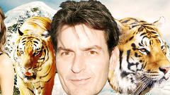Charlie Sheen Ruined My Brand: Ad.ly's Walter Delph