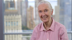 Exclusive: Jane Goodall On Cecil The Lion And How To Stay Inspired