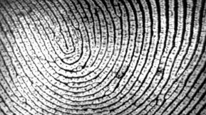 France Is Testing Fingerprint Payment Technology