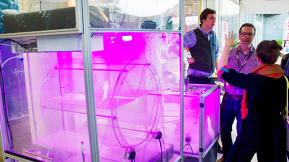 This Glowing Purple Cube Is An Indoor Farm
