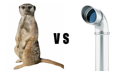 The Ultimate Meerkat Vs. Periscope Showdown